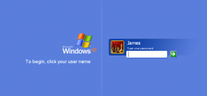 The Windows password screen